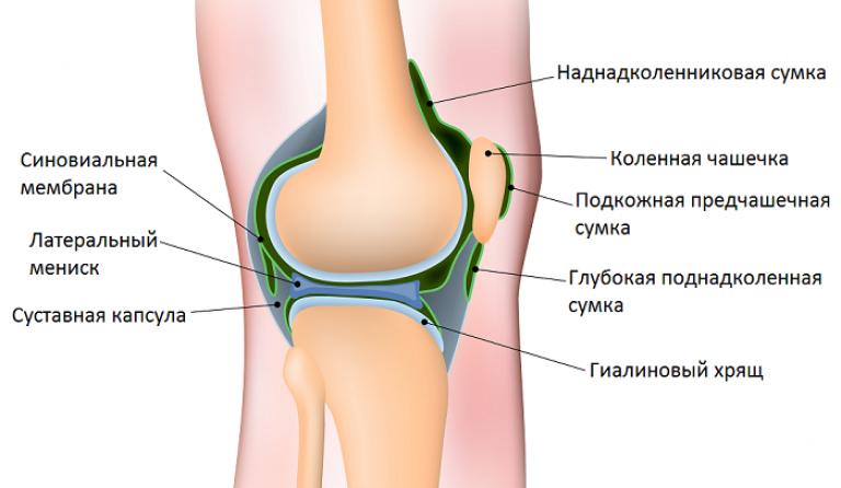 ворсинчатый синовит коленного сустава симптомы лечение