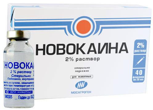 новакаин