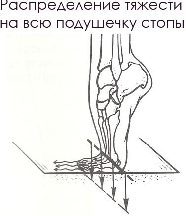 подушечка стопы