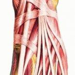 Последствия болей в верхней части стопы— как лечить?